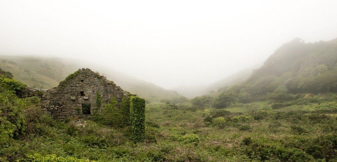 Pasionatii de arhitectura se vor specializa in reabilitarea monumentelor istorice